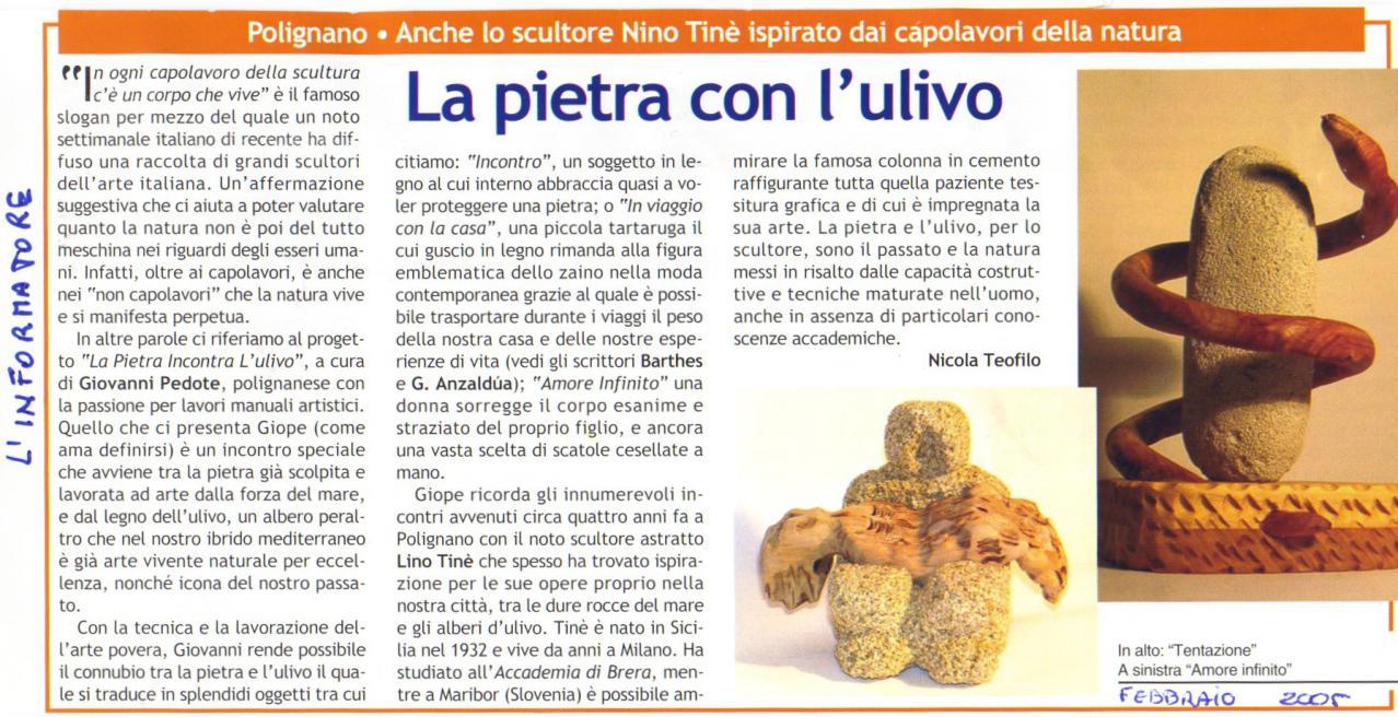 Articolo informatore 2005